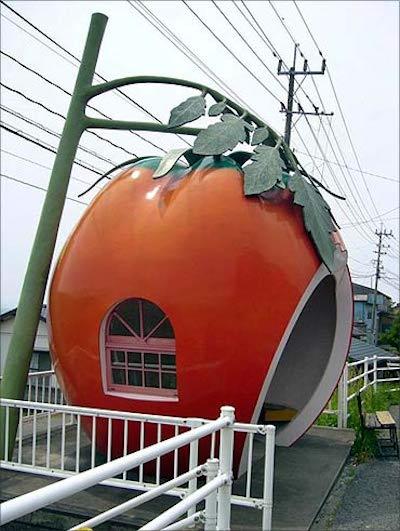 A Ishaya, Japon